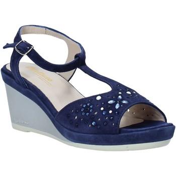 Παπούτσια Γυναίκα Σανδάλια / Πέδιλα Melluso HR70511 Μπλε