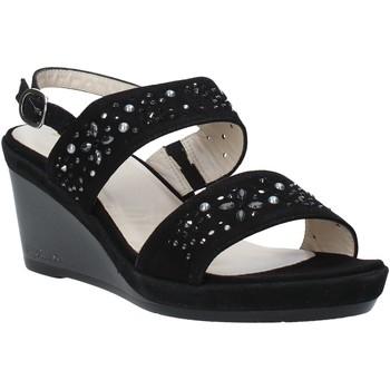 Παπούτσια Γυναίκα Σανδάλια / Πέδιλα Melluso HR70512 Μαύρος