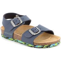 Παπούτσια Παιδί Σανδάλια / Πέδιλα Grunland SB1644 Μπλε