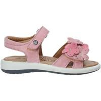Παπούτσια Κορίτσι Σανδάλια / Πέδιλα Naturino 502555 03 Ροζ