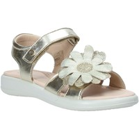 Παπούτσια Κορίτσι Σανδάλια / Πέδιλα Naturino 502728 04 Οι υπολοιποι