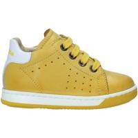 Παπούτσια Παιδί Χαμηλά Sneakers Falcotto 2013491 01 Κίτρινος