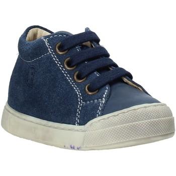 Παπούτσια Παιδί Χαμηλά Sneakers Falcotto 2014601 01 Μπλε