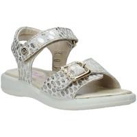 Παπούτσια Κορίτσι Σανδάλια / Πέδιλα Naturino 502361 02 Οι υπολοιποι