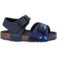Παπούτσια Παιδί Σανδάλια / Πέδιλα Grunland SB1646 Μπλε
