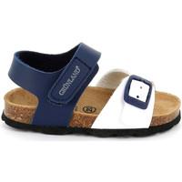 Παπούτσια Παιδί Σανδάλια / Πέδιλα Grunland SB1892 Μπλε
