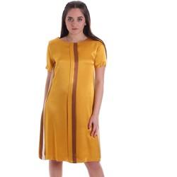 Υφασμάτινα Γυναίκα Κοντά Φορέματα Café Noir JA6260 Κίτρινος
