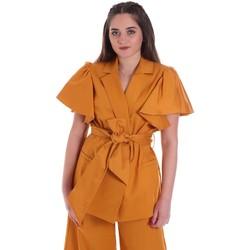 Υφασμάτινα Γυναίκα Σακάκι / Blazers Cristinaeffe 0308 2491 Κίτρινος