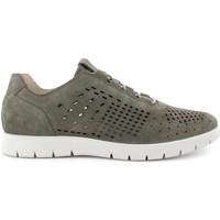 Παπούτσια Άνδρας Χαμηλά Sneakers IgI&CO 7118333 Πράσινος