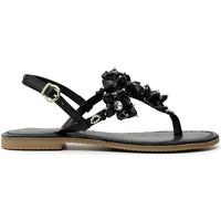 Παπούτσια Γυναίκα Σαγιονάρες Café Noir GF1820 Μαύρος