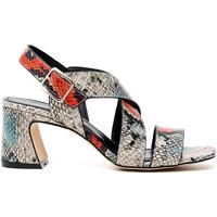 Παπούτσια Γυναίκα Σανδάλια / Πέδιλα Café Noir LA9470 το κόκκινο