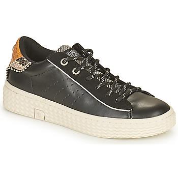 Παπούτσια Γυναίκα Χαμηλά Sneakers Palladium Manufacture TEMPO 04 SYN Black