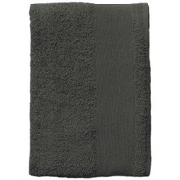 Σπίτι Πετσέτες και γάντια μπάνιου Sols BAYSIDE 100 Gris Oscuro Gris
