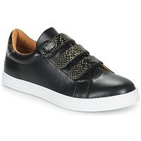 Παπούτσια Γυναίκα Χαμηλά Sneakers Moony Mood POLINE Black