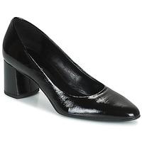 Παπούτσια Γυναίκα Γόβες Betty London PANEA Black