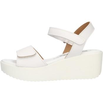 Παπούτσια Γυναίκα Σανδάλια / Πέδιλα Bionatura 67JOLANDA White
