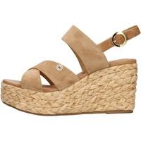 Παπούτσια Γυναίκα Σανδάλια / Πέδιλα Wrangler WL11640A Beige