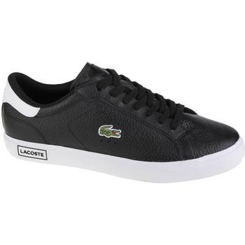 Παπούτσια Άνδρας Χαμηλά Sneakers Lacoste Powercourt Noir