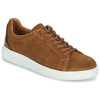Παπούτσια Άνδρας Χαμηλά Sneakers Pellet OSCAR Brown