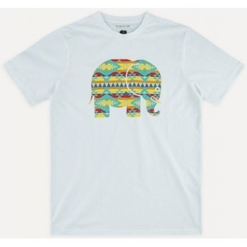 Υφασμάτινα Άνδρας T-shirt με κοντά μανίκια Trendsplant NAVAJO 029940MNAV Άσπρο