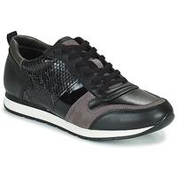 Παπούτσια Γυναίκα Χαμηλά Sneakers Betty London PERMINE Black