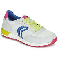 Παπούτσια Κορίτσι Χαμηλά Sneakers Geox J ALBEN GIRL Άσπρο / Μπλέ / Ροζ