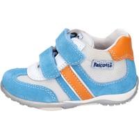 Παπούτσια Αγόρι Χαμηλά Sneakers Falcotto BH196 Μπλε
