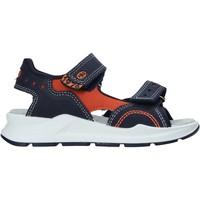 Παπούτσια Παιδί Σπορ σανδάλια Primigi 7399100 Μπλε