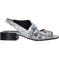 Παπούτσια Γυναίκα Σανδάλια / Πέδιλα Bueno Shoes 21WS4900 Γκρί