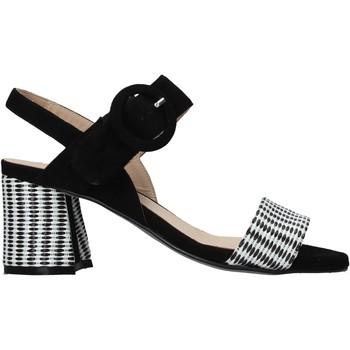 Παπούτσια Γυναίκα Σανδάλια / Πέδιλα Carmens Padova 45107 Μαύρος