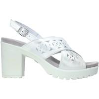 Παπούτσια Γυναίκα Σανδάλια / Πέδιλα IgI&CO 7171000 λευκό
