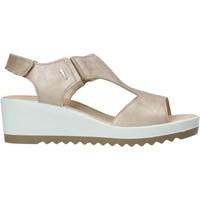 Παπούτσια Γυναίκα Σανδάλια / Πέδιλα IgI&CO 7163100 Μπεζ