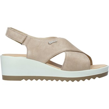 Παπούτσια Γυναίκα Σανδάλια / Πέδιλα IgI&CO 7163000 Μπεζ