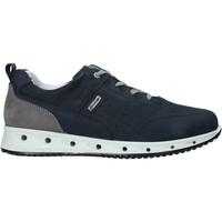 Παπούτσια Άνδρας Sneakers IgI&CO 7121000 Μπλε