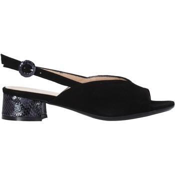 Παπούτσια Γυναίκα Σανδάλια / Πέδιλα Soffice Sogno E2154 Μαύρος