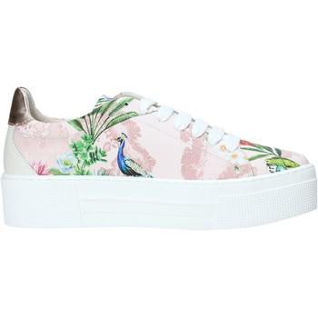 Παπούτσια Γυναίκα Χαμηλά Sneakers Alviero Martini P806 622A Ροζ