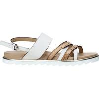 Παπούτσια Γυναίκα Σανδάλια / Πέδιλα Alviero Martini E087 422A λευκό