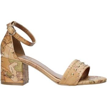 Παπούτσια Γυναίκα Σανδάλια / Πέδιλα Alviero Martini E121 8391 καφέ