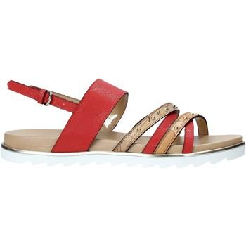 Παπούτσια Γυναίκα Σανδάλια / Πέδιλα Alviero Martini E087 422A το κόκκινο