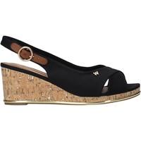 Παπούτσια Γυναίκα Σανδάλια / Πέδιλα Wrangler WL11653A Μαύρος