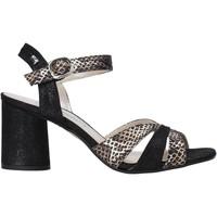 Παπούτσια Γυναίκα Σανδάλια / Πέδιλα Valleverde 28270 Μαύρος