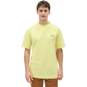 Υφασμάτινα Άνδρας T-shirt με κοντά μανίκια Dickies DK0A4X9OB541 Κίτρινος