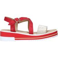 Παπούτσια Γυναίκα Σανδάλια / Πέδιλα IgI&CO 5189033 το κόκκινο