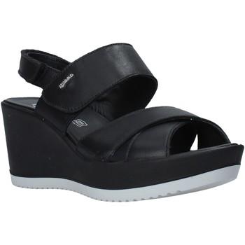 Παπούτσια Γυναίκα Σανδάλια / Πέδιλα IgI&CO 5179500 Μαύρος