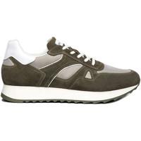 Παπούτσια Άνδρας Χαμηλά Sneakers NeroGiardini E101980U Πράσινος