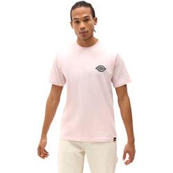 Υφασμάτινα Άνδρας T-shirt με κοντά μανίκια Dickies DK0A4XENLPI1 Ροζ