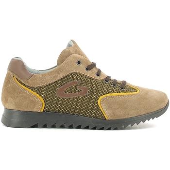 Παπούτσια Παιδί Χαμηλά Sneakers Alberto Guardiani GK22343G Μπεζ
