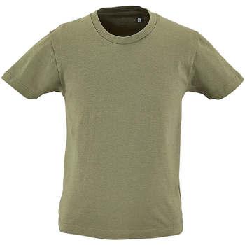 Υφασμάτινα Παιδί T-shirt με κοντά μανίκια Sols CAMISETA DE MANGA CORTA Kaki