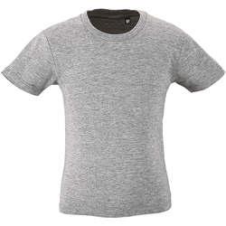 Υφασμάτινα Παιδί T-shirt με κοντά μανίκια Sols CAMISETA DE MANGA CORTA Gris