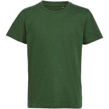 Υφασμάτινα Παιδί T-shirt με κοντά μανίκια Sols CAMISETA DE MANGA CORTA Verde
